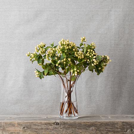 Florabundance Daffodil vase