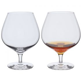 Wine Master Brandy Glasses