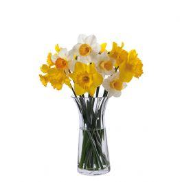 New DARTINGTON CRYSTAL Flora DAFFODIL VASE Clear Glass TALL Florabundance Gift