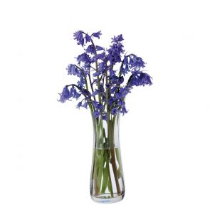 Florabundance Bluebell Vase - Slightly Imperfect
