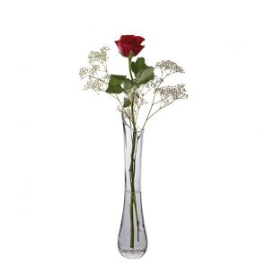 Florabundance Single Rose Vase
