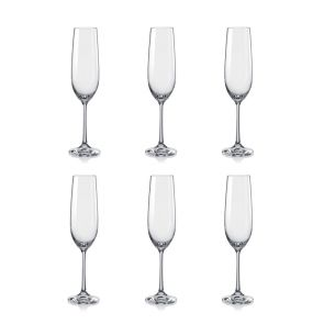 Six Champagne Flutes - 6 Pack