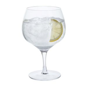 Bar Excellence Gin Copa Glasses