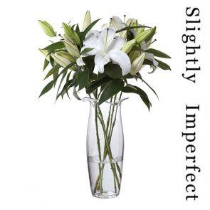 Florabundance Lily Vase - Slightly Imperfect
