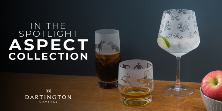 In The Spotlight: Aspect Collection