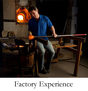 Factory Experience